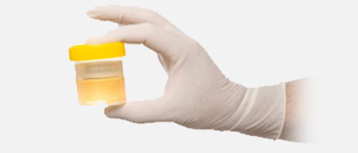 Best Fake Pee For Drug Test