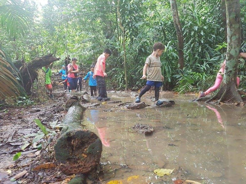 Forest child school
